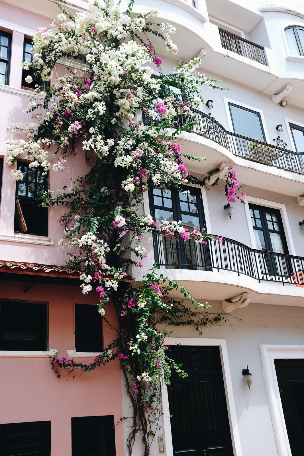 A Travel Guide to Casco Viejo in Panama City